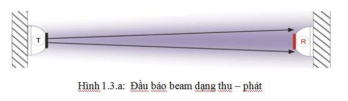 dau bao beam thu phat