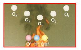Phá hủy chuỗi phản ứng hóa học