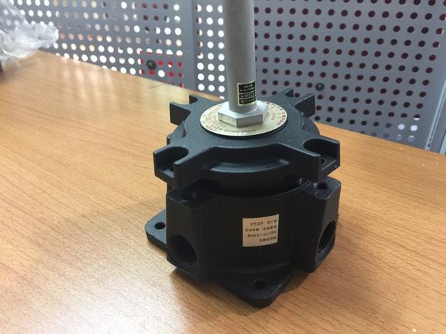 Đầu báo nhiệt cố định chống nổ FFH-2E070 Hochiki